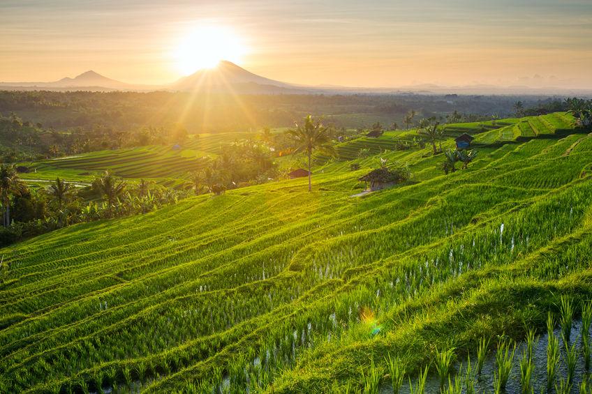 Rucksackreisen Indonesien