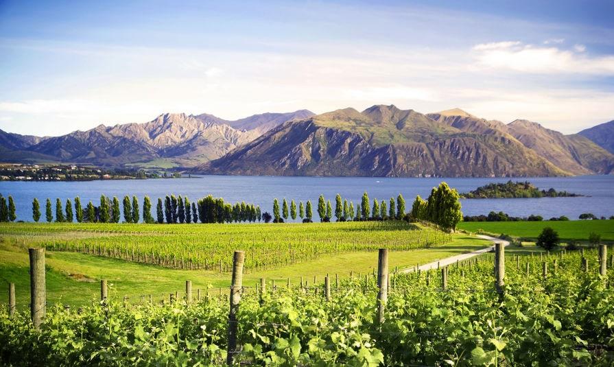 Rucksackreisen Neuseeland